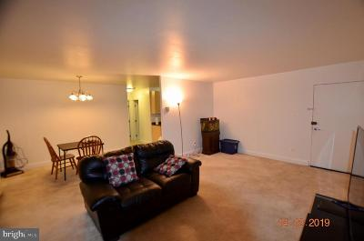 Hyattsville Condo For Sale: 5601 Parker House Terrace #412