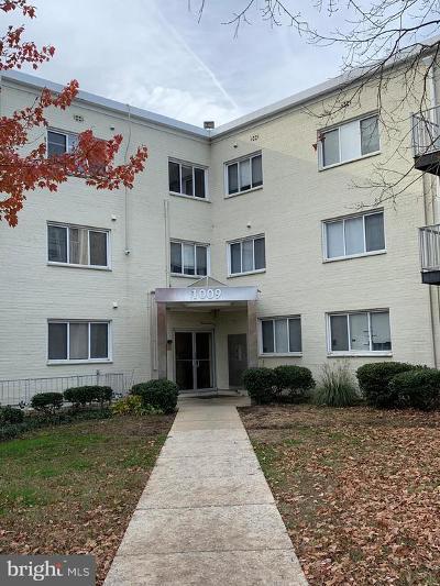 Hyattsville Condo For Sale: 1009 Chillum Road #207