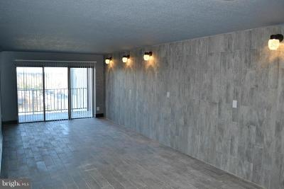 Hyattsville Condo For Sale: 9200 Edwards Way #1211