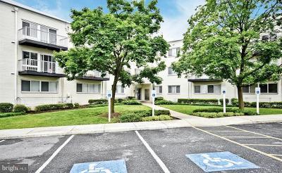 Hyattsville Condo For Sale: 1001 Chillum Road #107