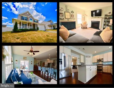 Centreville Single Family Home For Sale: 166 Long Creek Way