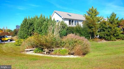 Stevensville Single Family Home For Sale: 100 Cove Creek Road