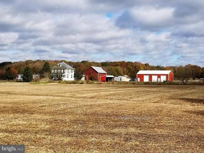 Queen Annes County Farm For Sale: 160 Dixon Stable Lane