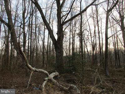 Queen Annes County, QUEEN ANNE COUNTY Residential Lots & Land For Sale: Hoffecher Road