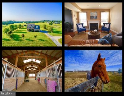 Queen Annes County Farm For Sale: 224 Sparks Mill Road