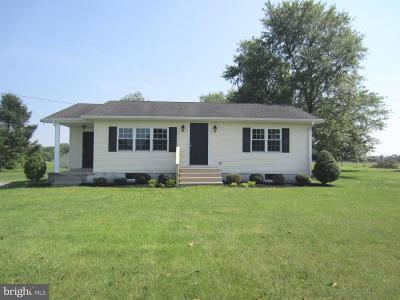 Sudlersville Single Family Home For Sale: 5504 Sudlersville Road