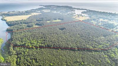Stevensville Residential Lots & Land For Sale: 6509 Kent Point Road