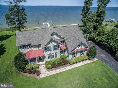 Bloody Point Farm Single Family Home For Sale: 249 Lighthouse View Drive