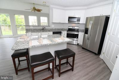 Centreville  Single Family Home For Sale: 212 Green Street