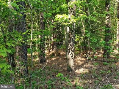 Queen Annes County, QUEEN ANNE COUNTY Residential Lots & Land For Sale: 120 Cecil Road