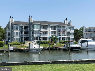 Queen Annes County Condo For Sale: 412 Oyster Cove Drive