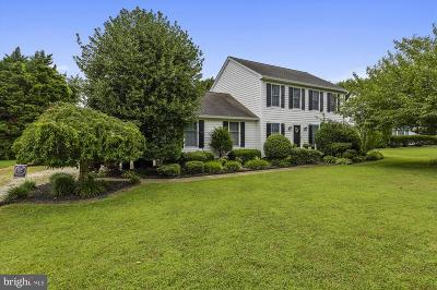 Centreville Single Family Home For Sale: 209 Frederick Drive