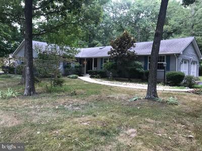Grasonville Single Family Home For Sale: 324 Prospect Bay Dr W