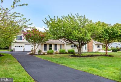 Grasonville Single Family Home For Sale: 214 Prospect Bay Dr W