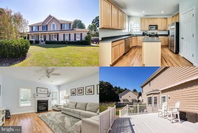Single Family Home For Sale: 103 Aslan Court