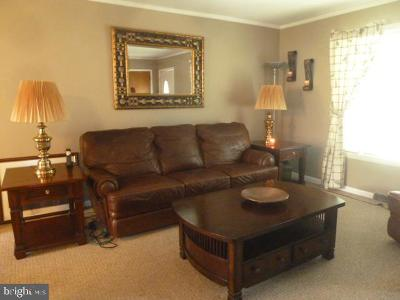 Centreville Single Family Home For Sale: 305 Little Kidwell Avenue