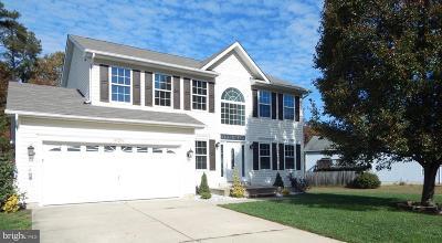 Lexington Park Single Family Home For Sale: 47256 Silver Slate Drive