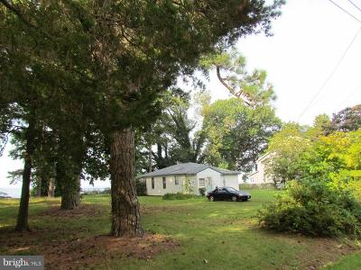 Leonardtown Single Family Home For Sale: 42135 White Point Beach Road