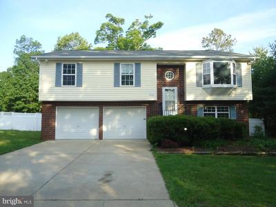 Saint Marys County Single Family Home For Sale: 22355 Purple Martin Court