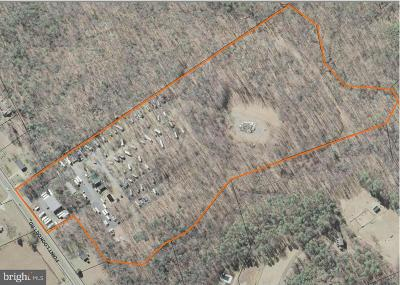 Anne Arundel County, Calvert County, Charles County, Prince Georges County, Saint Marys County Commercial For Sale: 23285 Point Lookout Road