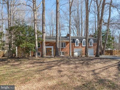 Mechanicsville Single Family Home For Sale: 29602 Dogwood Circle