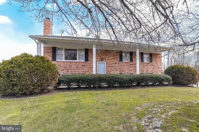 Mechanicsville Single Family Home For Sale: 40170 Mary Drive