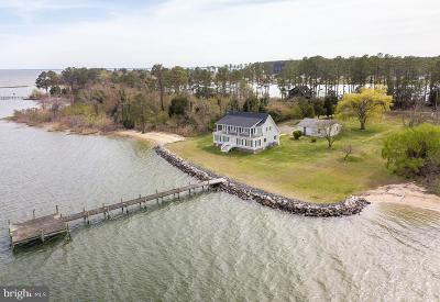 Saint Marys County Single Family Home For Sale: 16168 Piney Point Road