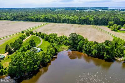 Charles County, Calvert County, Saint Marys County Residential Lots & Land For Sale: 48968 Curleys Road