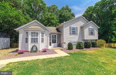 Mechanicsville Single Family Home For Sale: 38990 Lupes Court