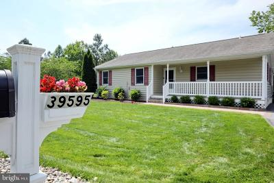 Mechanicsville Single Family Home For Sale: 39595 Ellen Court