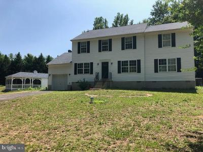 Mechanicsville Single Family Home For Sale: 29271 Eliza Way