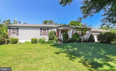 Charles County, Calvert County, Saint Marys County Single Family Home For Sale: 20243 Michelle Drive