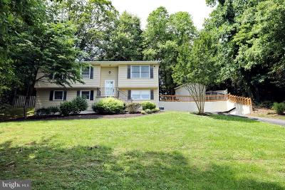 Mechanicsville Single Family Home For Sale: 42273 Manor Drive