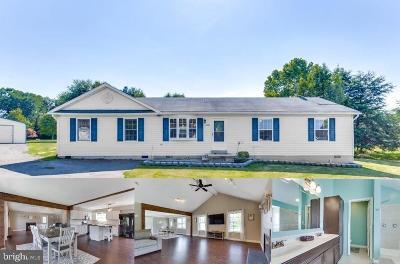 Mechanicsville Single Family Home For Sale: 26683 Cecilia Court