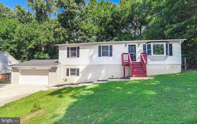 Mechanicsville Single Family Home For Sale: 35866 Army Navy Drive