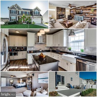 Saint Marys County Single Family Home For Sale: 45558 Bethson Street