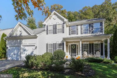 Easton Single Family Home For Sale: 29444 Hemlock Lane