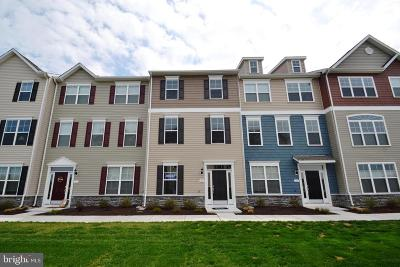 Talbot County Condo For Sale: 12 Water Hole Lane