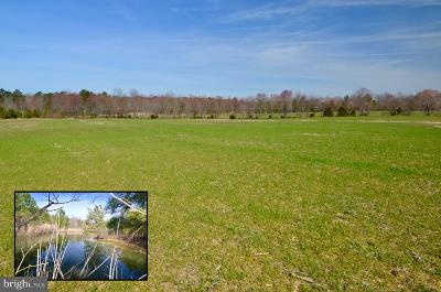 Easton Residential Lots & Land For Sale: 10312 Longwoods Road