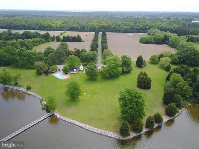 Talbot County Single Family Home For Sale: 8824 Bozman Neavitt Road
