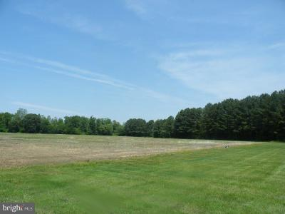 Easton Residential Lots & Land For Sale: 8530 Willis Drive
