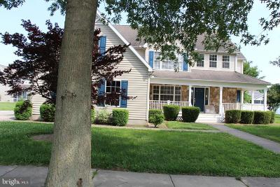 Easton Single Family Home For Sale: 8197 June Way