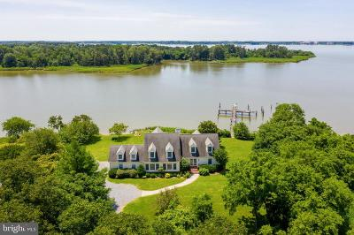 Cecil County, Dorchester County, Kent County, Queen Annes County, Somerset County, Talbot County Single Family Home For Sale: 30229 Cods Point Road