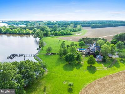Talbot County Farm For Sale: 26035 Marengo Road