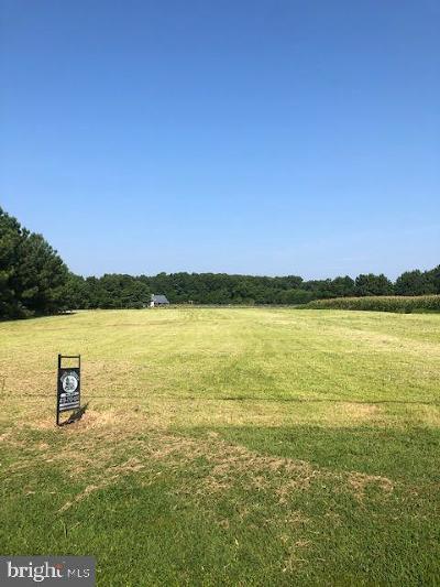 Residential Lots & Land For Sale: McDaniel Farm Lane