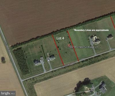 Residential Lots & Land For Sale: 30238 Chestnut Ridge Road