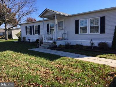 Easton Single Family Home For Sale: 16 St James Court