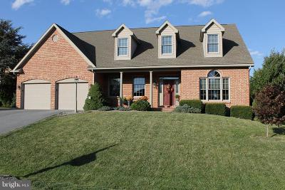 Hagerstown Single Family Home For Sale: 19106 Rock Maple Drive