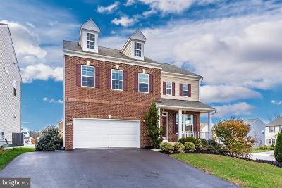 Hagerstown Single Family Home For Sale: 9424 Morning Dew Drive