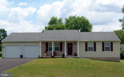 Hagerstown Single Family Home For Sale: 321 Willowbrook